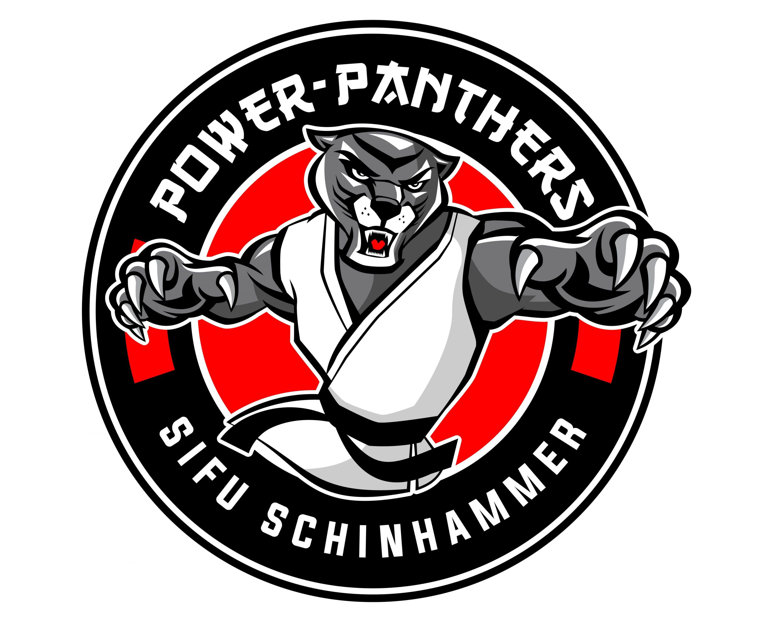 Power Teens - Power Panthers 11 - 15